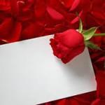 Cartas de amor y de amistad