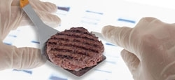 hamburguesa equino