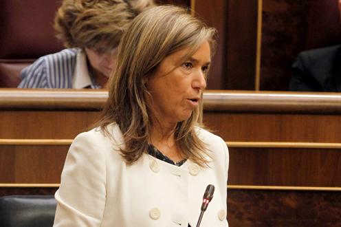 ana mato 2013